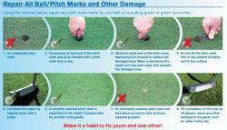 How to Properly Repair Pitchmarks
